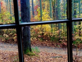 View of fall from the window